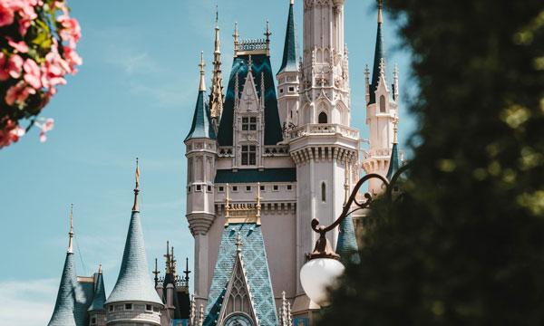 The Walt Disney Travel Company